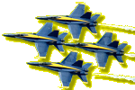 The Blue Angels aerobatic team